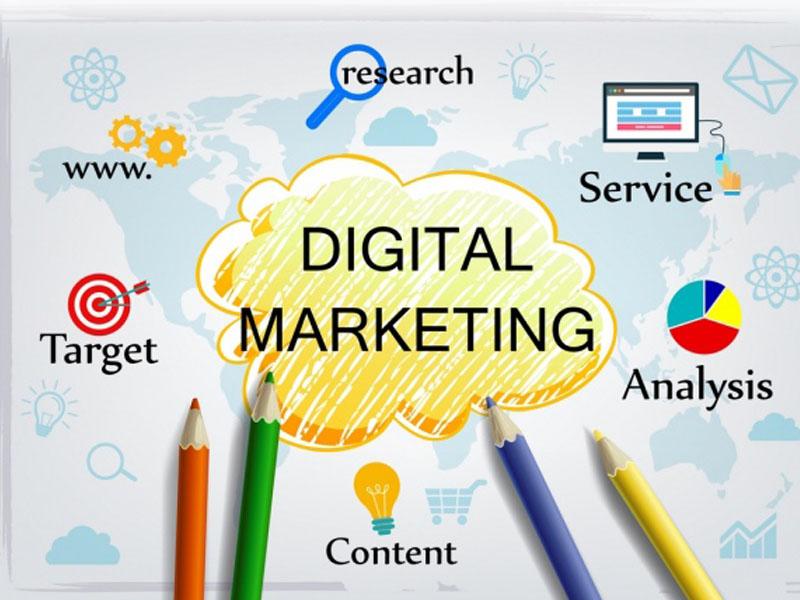 Website Digital Marketing Infographic